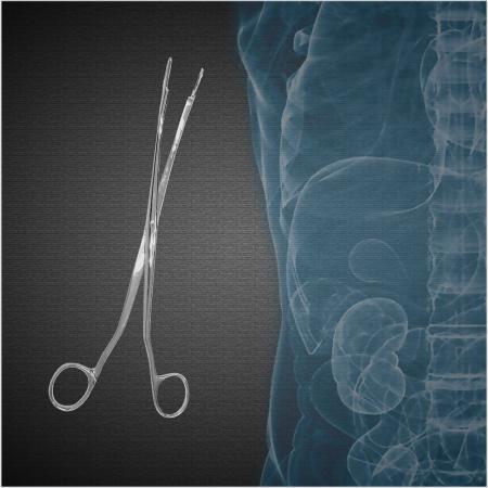 Urologia